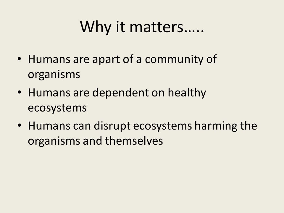Why it matters…..