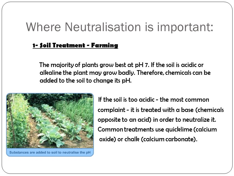 Where Neutralisation is important: 1- Soil Treatment - Farming The majority of plants grow best at pH 7.