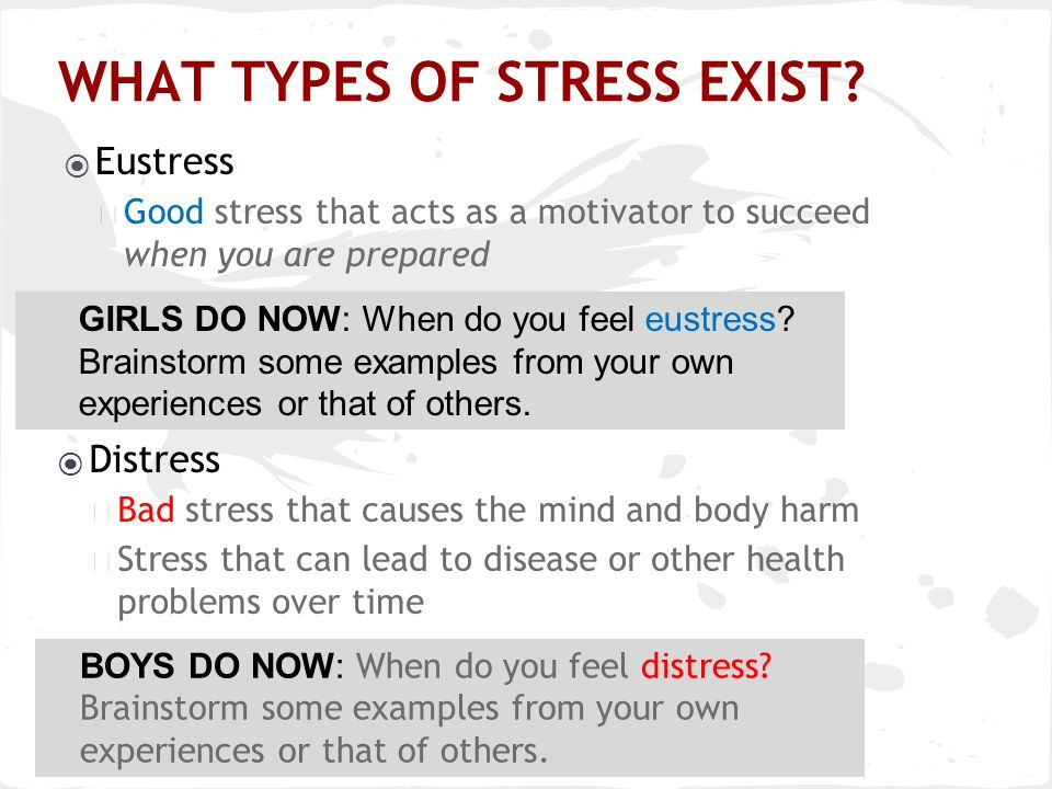 Todays Agenda The Stress Response What Stresses You Out Deep