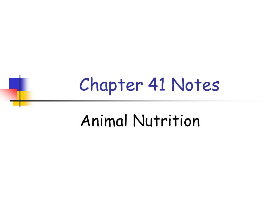 1 Chapter 41 Notes Animal Nutrition