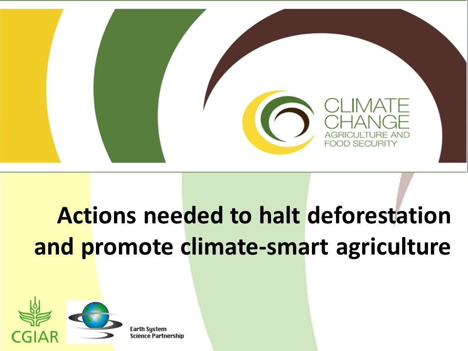 Actions needed to halt deforestation and promote climate-smart agriculture