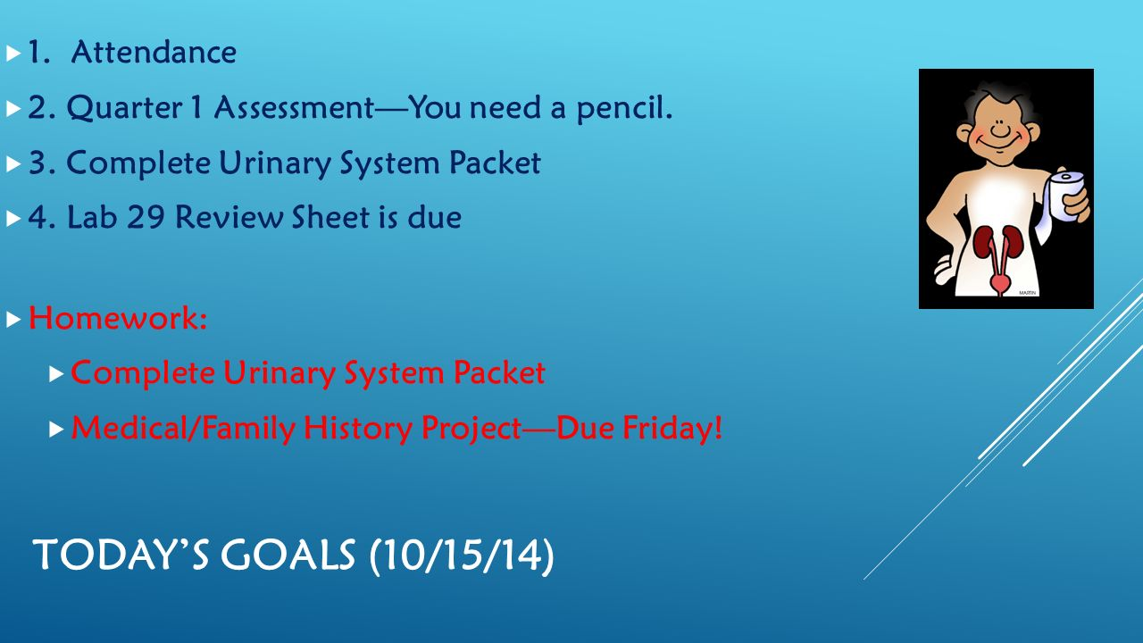 TODAY\'S GOALS (8/20/14)  1. Attendance  2. Review and collect ...