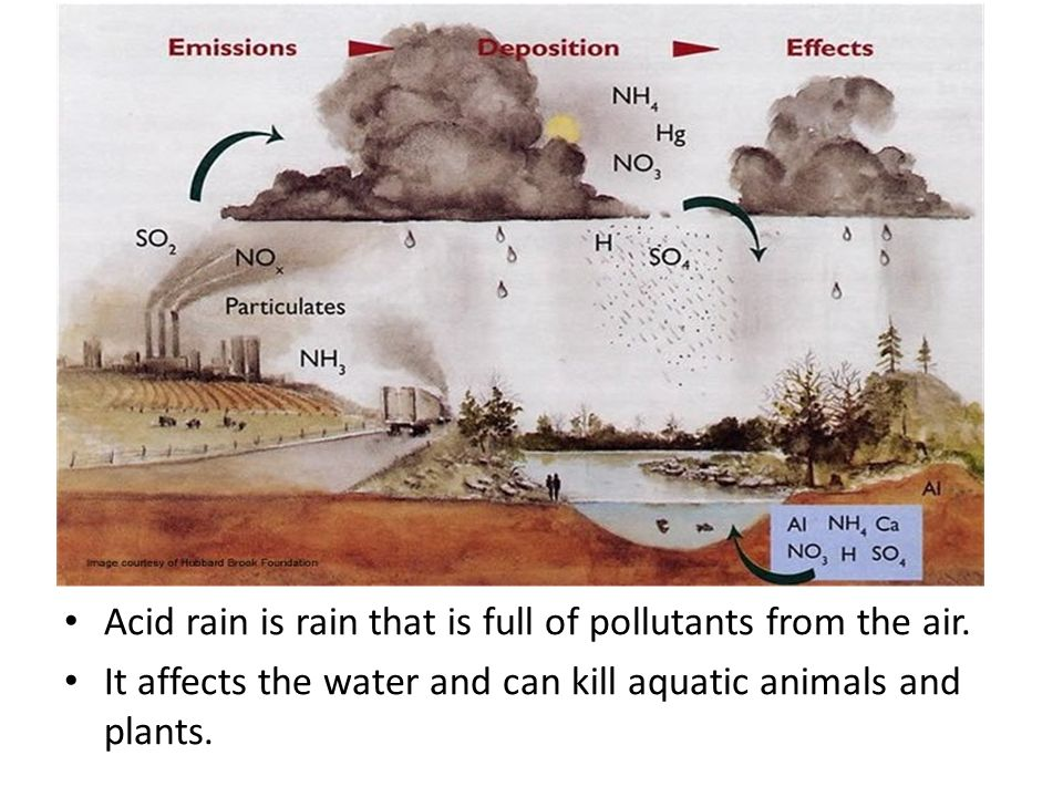 Acid rain is rain that is full of pollutants from the air.