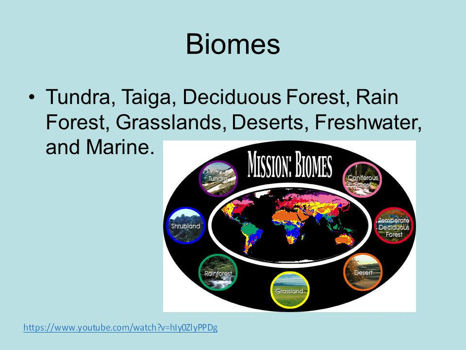 Biomes Tundra, Taiga, Deciduous Forest, Rain Forest, Grasslands, Deserts, Freshwater, and Marine.
