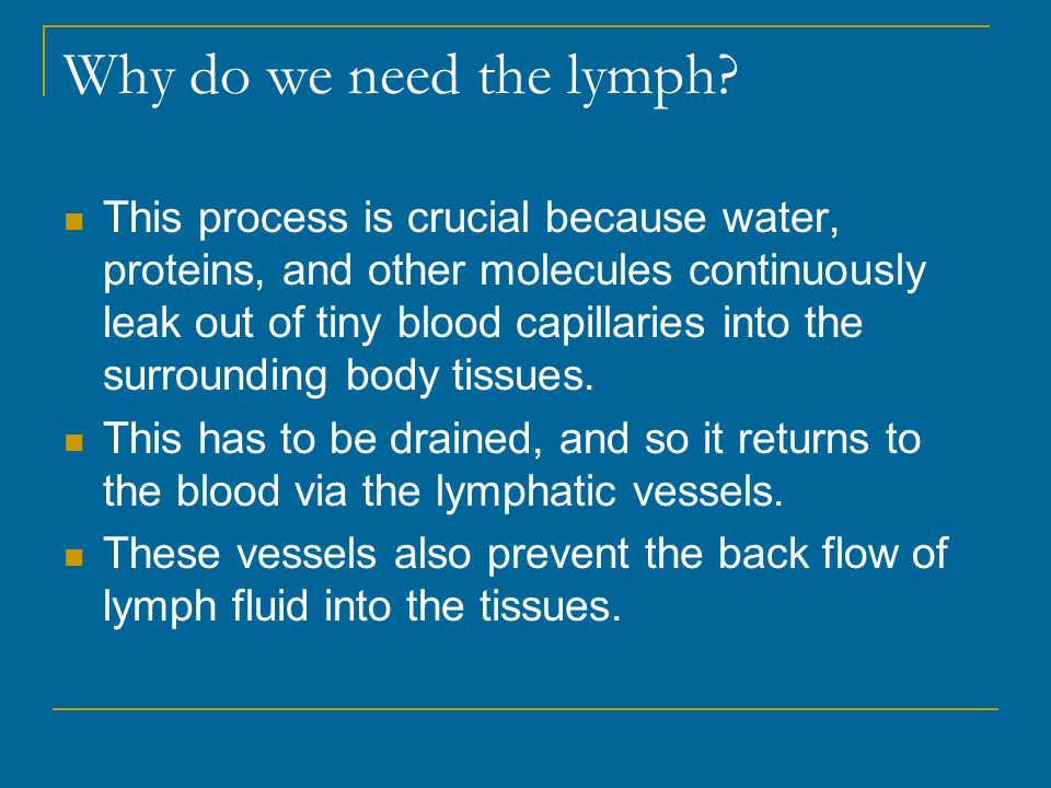 Why do we need the lymph.