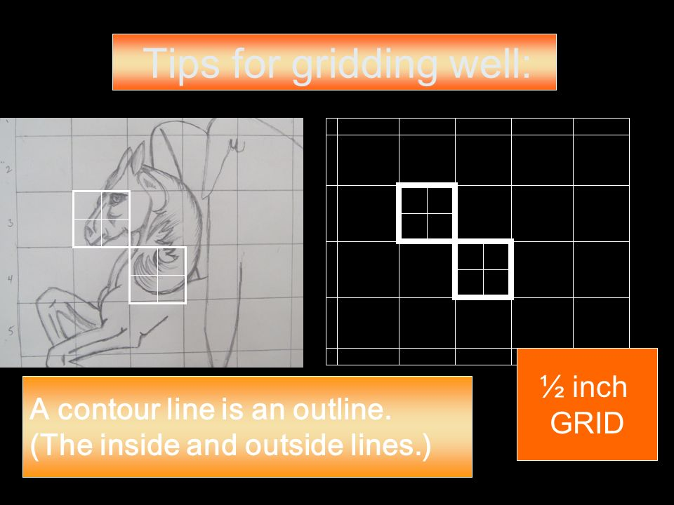 Tips for gridding well: A contour line is an outline. (The inside and outside lines.) ½ inch GRID