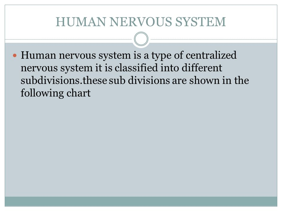 Human Nervous System Human Nervous System Is A Type Of Centralized