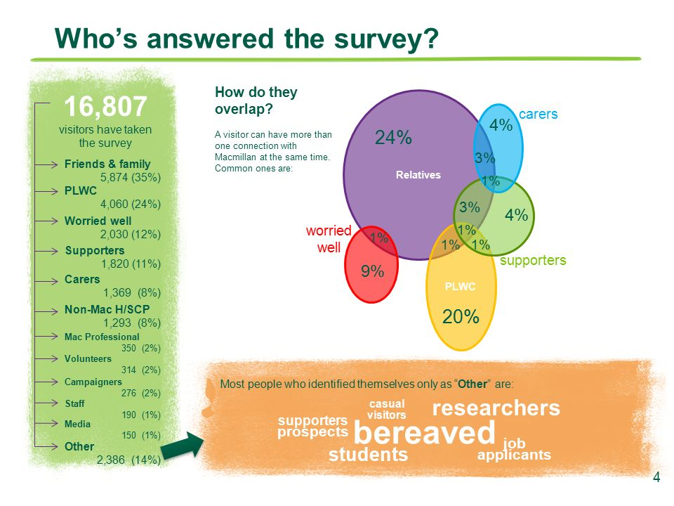 Macmillan Website Visitor Survey Research Insight June Ppt Download