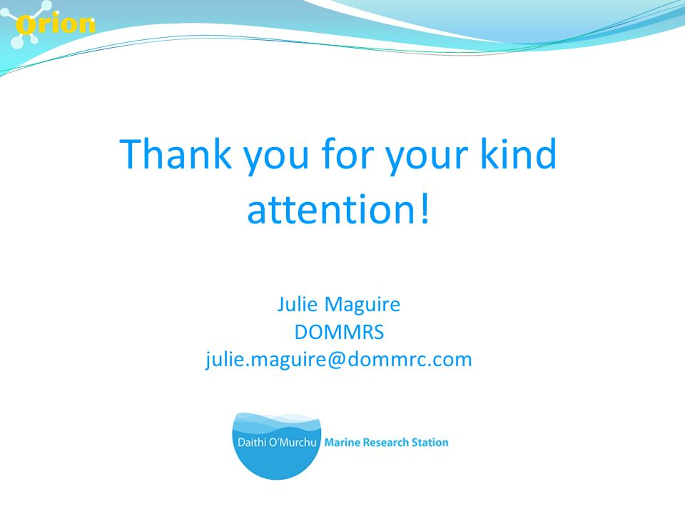Thank you for your kind attention! Julie Maguire DOMMRS