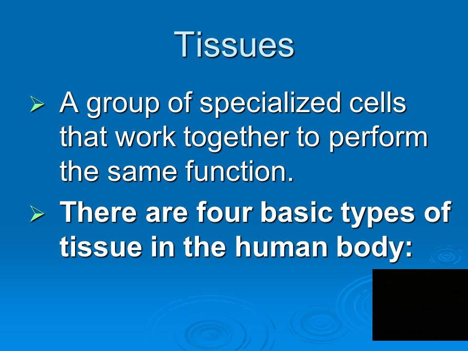 Tissues  A group of specialized cells that work together to perform the same function.