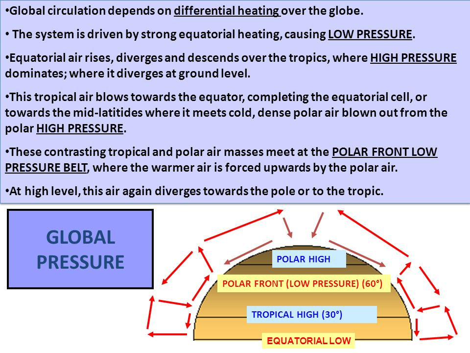 GLOBAL PRESSURE EQUATORIAL LOW POLAR FRONT (LOW PRESSURE) (60°) TROPICAL HIGH (30°) POLAR HIGH Global circulation depends on differential heating over the globe.