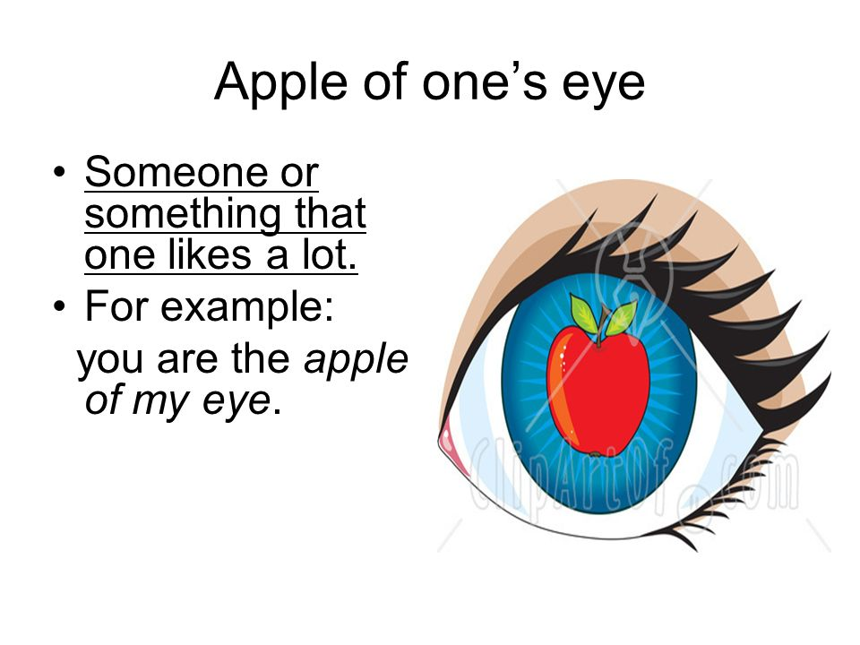 Food Idioms  Apple of one's eye Someone or something that