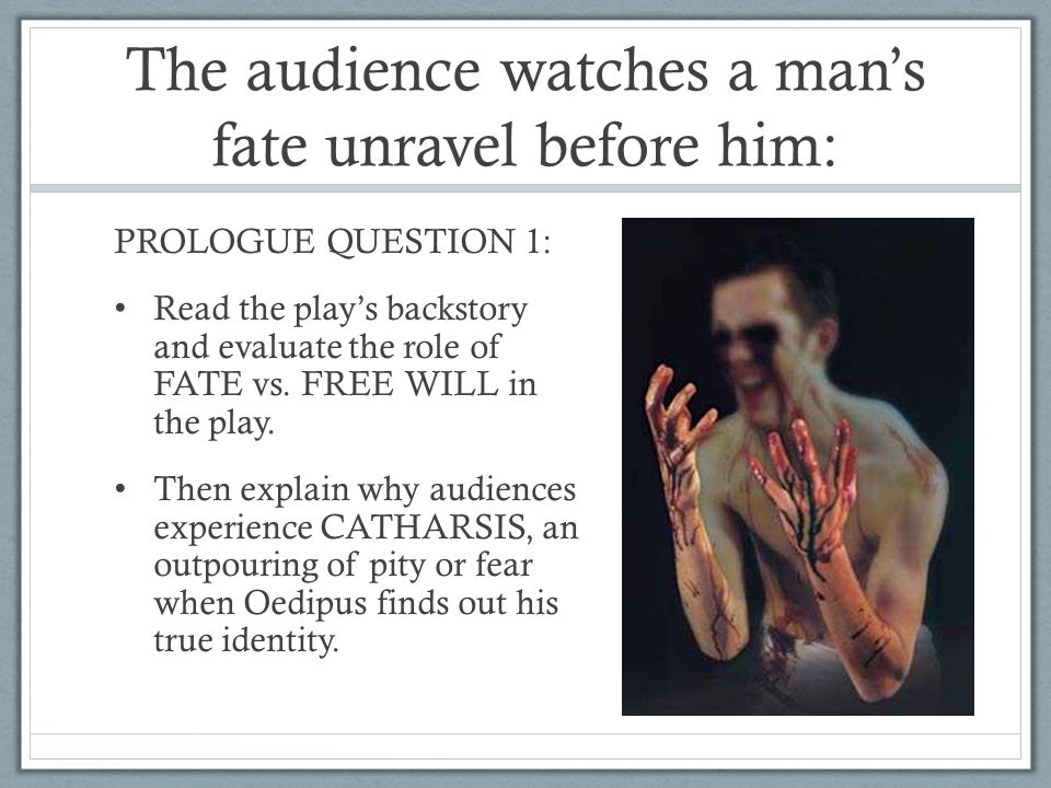 free will in oedipus rex and Oedipus rex was written by sophocles as a tragedy highlighting the inevitability of fate in the lives of human beings the finality of fate underlies in the entire theme of the play to quote charles segal, the story of oedipus is the archetypal myth of personal identity in western culture.