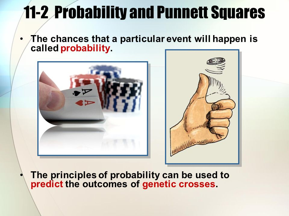 11-2 Probability and Punnett Squares The chances that a particular event will happen is called probability.