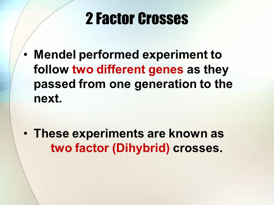 2 Factor Crosses Mendel performed experiment to follow two different genes as they passed from one generation to the next.