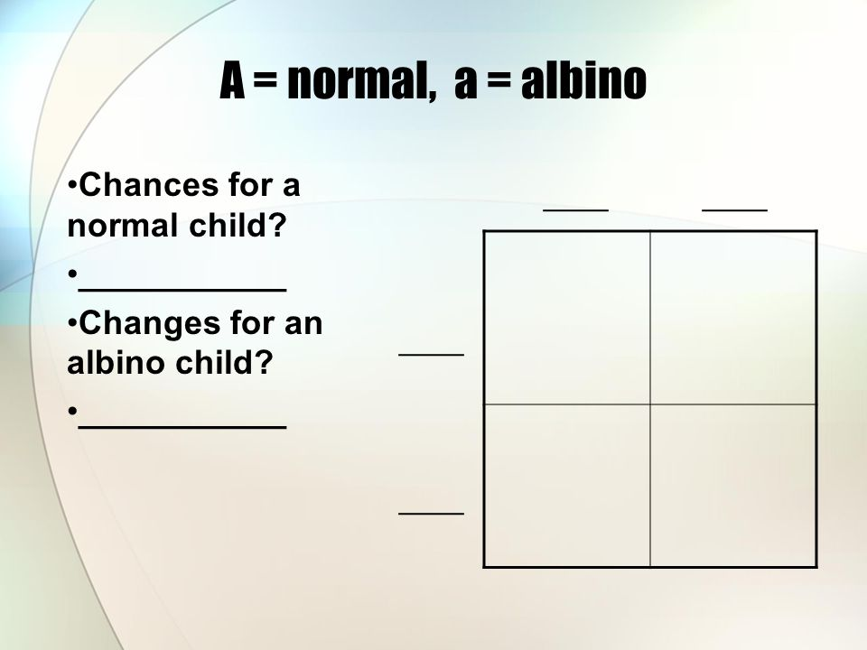A = normal, a = albino Chances for a normal child.