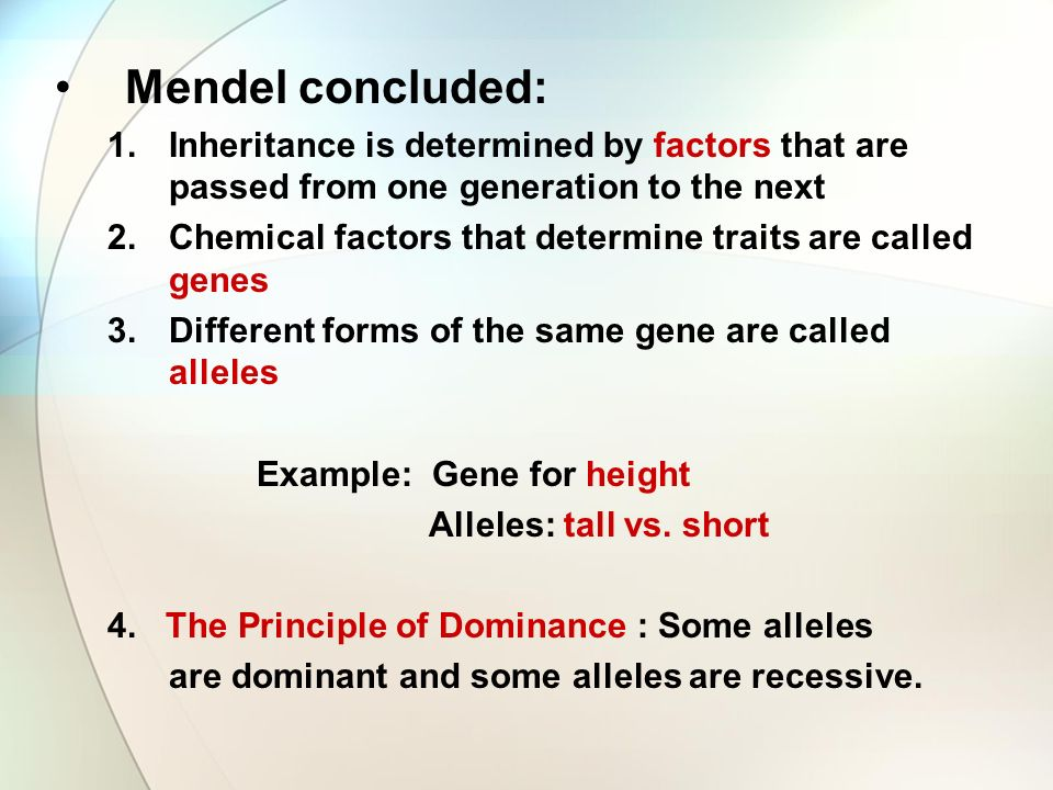 Mendel concluded: 1.Inheritance is determined by factors that are passed from one generation to the next 2.Chemical factors that determine traits are called genes 3.Different forms of the same gene are called alleles Example: Gene for height Alleles: tall vs.