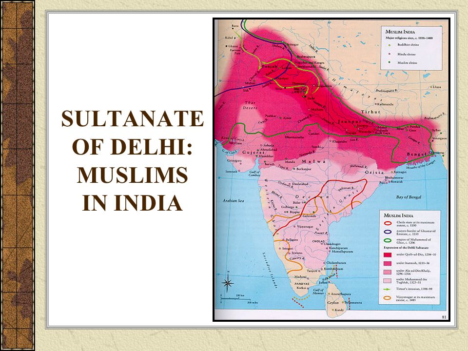 SULTANATE OF DELHI: MUSLIMS IN INDIA