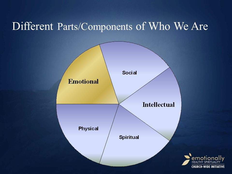 5 Different Parts/Components of Who We Are