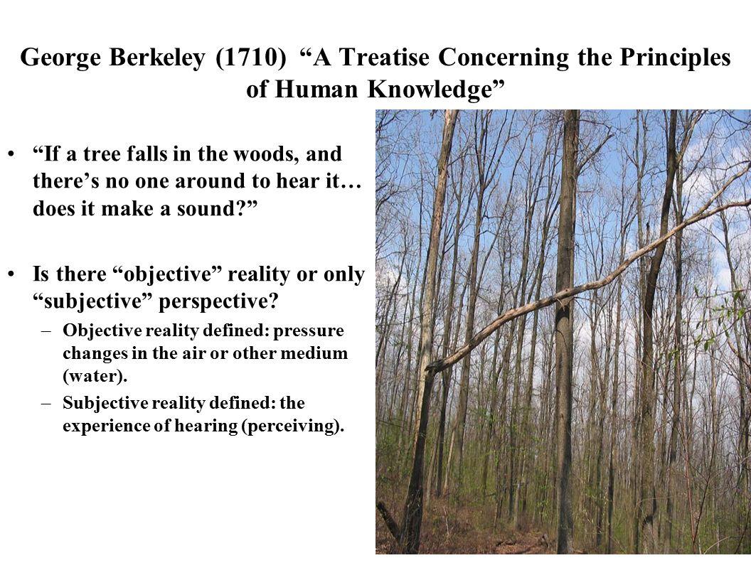 define subjective reality