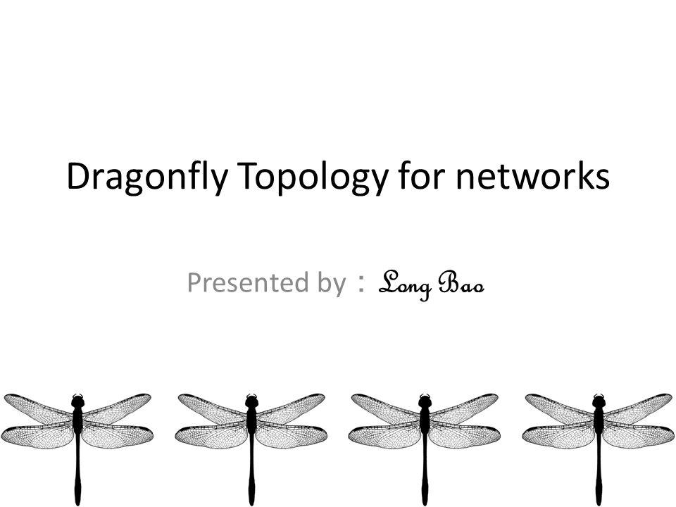 Dragonfly Block Diagram Online Schematic Diagram