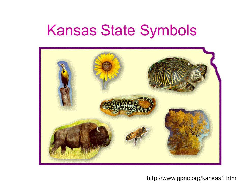 Kansas State Symbols Ppt Download