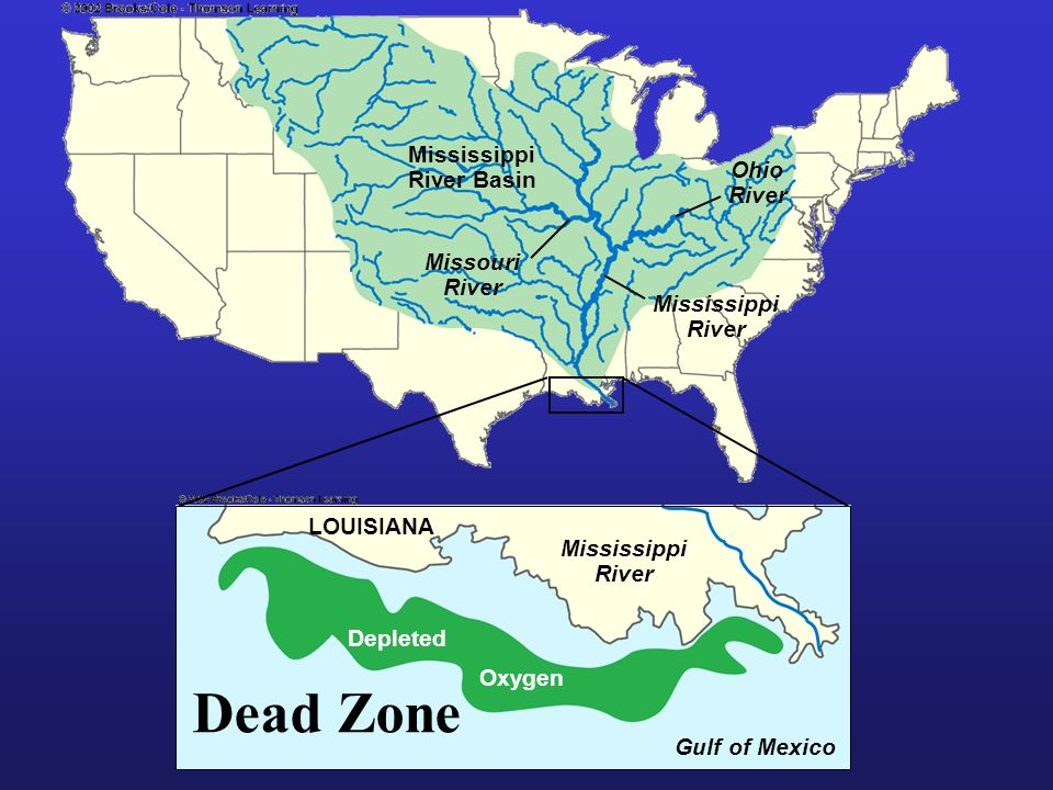 Mississippi River Basin Missouri River Ohio River Mississippi River LOUISIANA Mississippi River Depleted Oxygen Gulf of Mexico Dead Zone