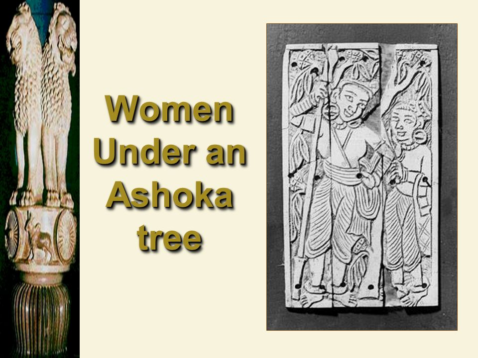 Women Under an Ashoka tree