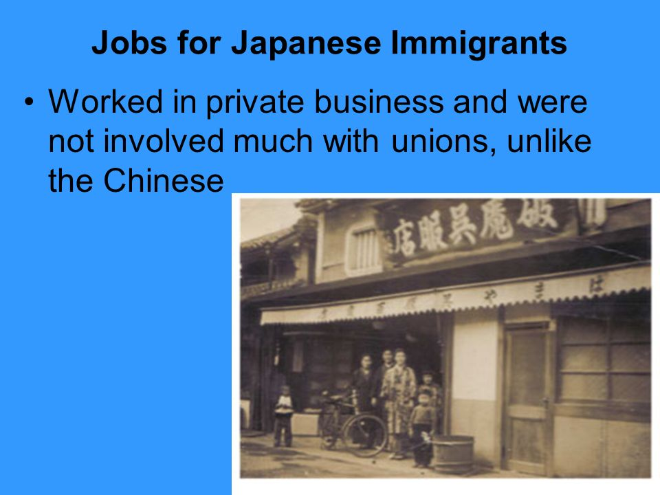 Jobs for Japanese Immigrants Worked in private business and were not involved much with unions, unlike the Chinese