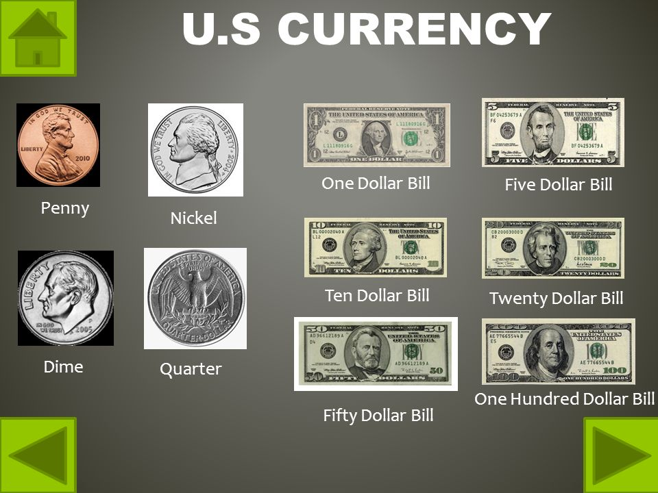 U.S CURRENCY Penny Nickel Dime Quarter One Dollar Bill Five Dollar Bill Ten Dollar Bill Twenty Dollar Bill Fifty Dollar Bill One Hundred Dollar Bill
