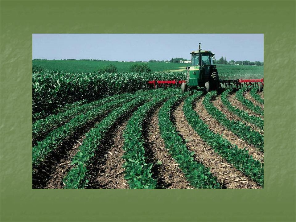 conservation tillage has its advantages and disadvantages when compared to conventional tillage soil prepared by conservation tillage tends to be