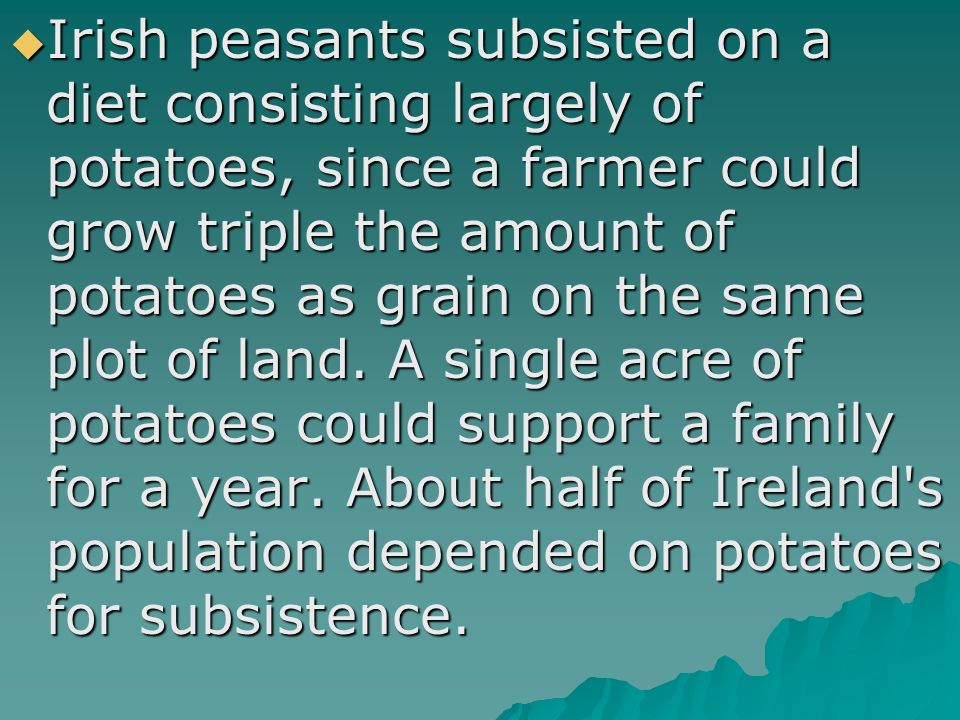  Irish peasants subsisted on a diet consisting largely of potatoes, since a farmer could grow triple the amount of potatoes as grain on the same plot of land.