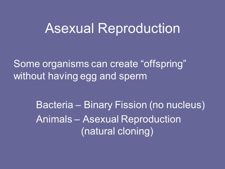 X gender asexual reproduction