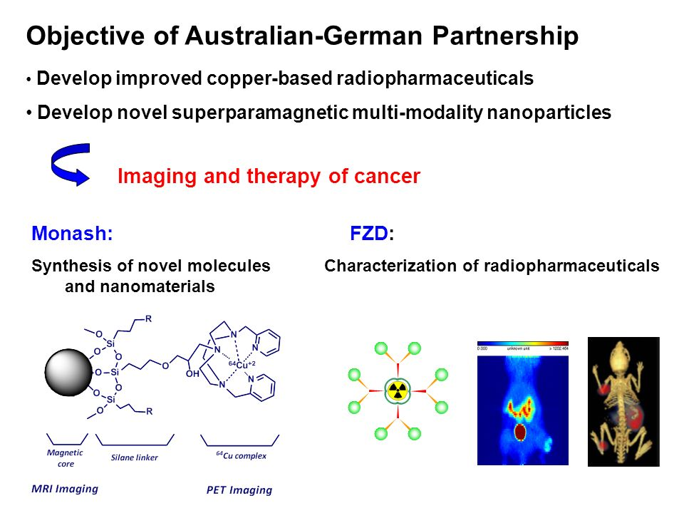 Objective of Australian-German Partnership Develop improved copper-based radiopharmaceuticals Develop novel superparamagnetic multi-modality nanoparticles Imaging and therapy of cancer Monash: FZD: Synthesis of novel molecules Characterization of radiopharmaceuticals and nanomaterials
