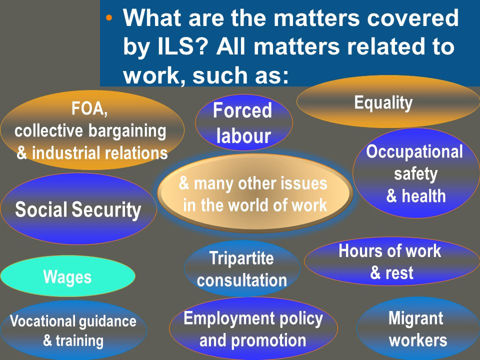 What are the matters covered by ILS.