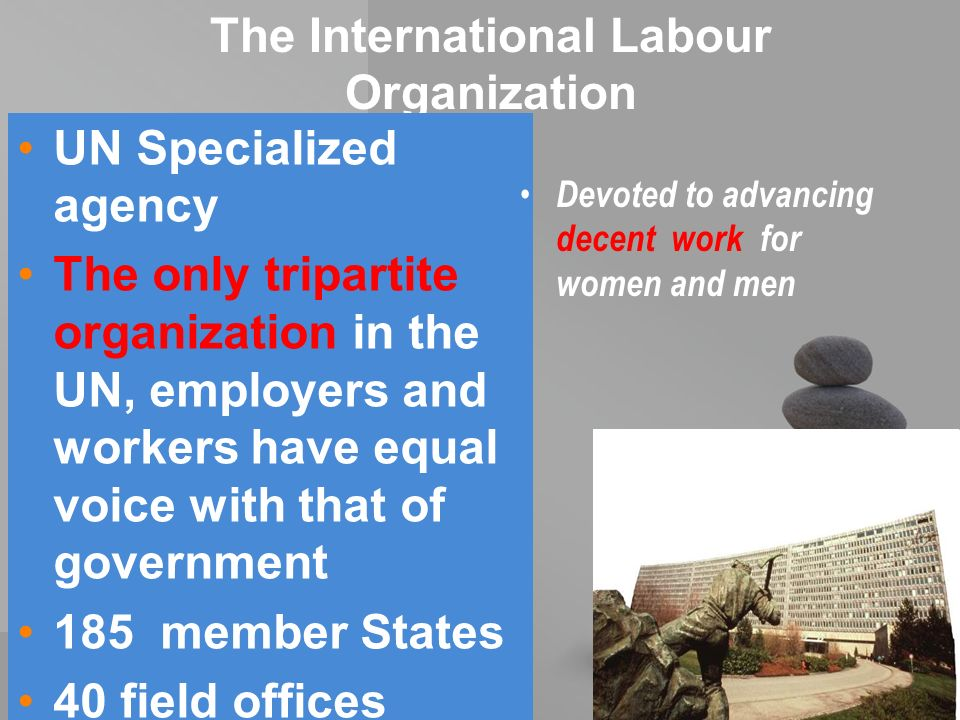 your name The International Labour Organization UN Specialized agency The only tripartite organization in the UN, employers and workers have equal voice with that of government 185 member States 40 field offices throughout the world Devoted to advancing decent work for women and men