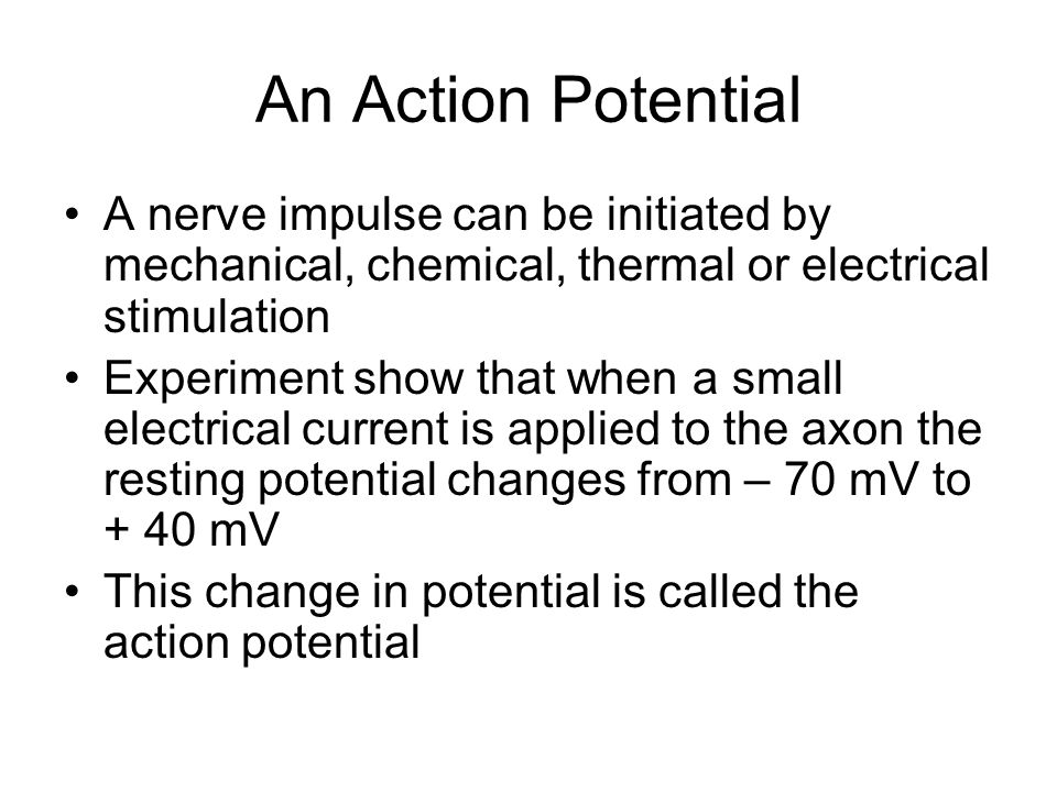 An Action Potential Action Potential An action potential is produced when membrane of neuron stimulated, the charge is reversed: The inside of the axon was -70 mV and this changes to +40 mV and membrane is said to be depolarized