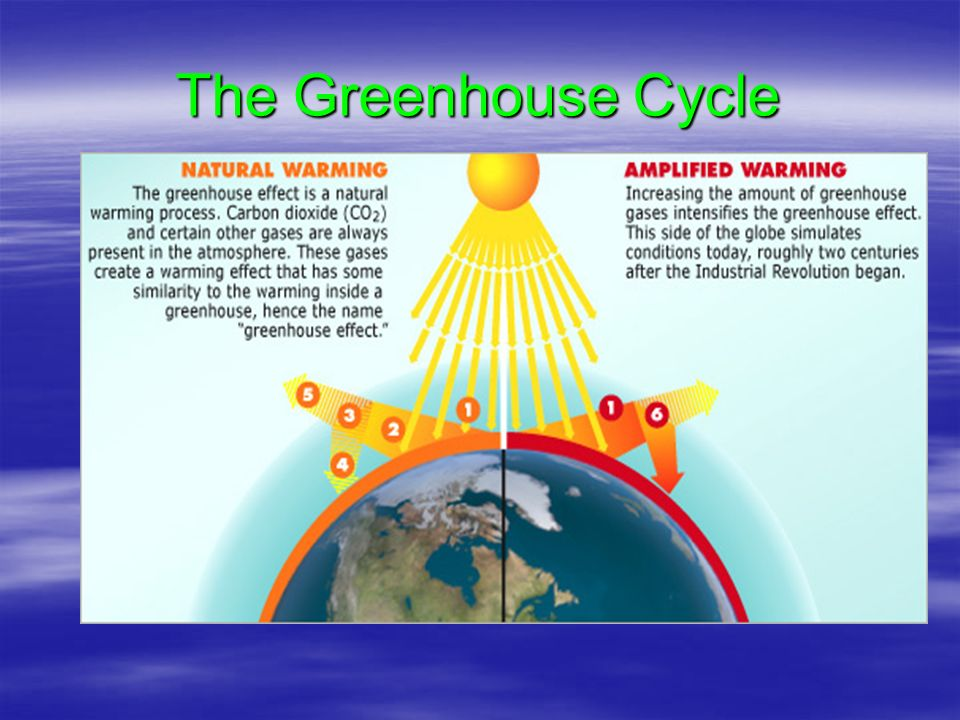 The Greenhouse Cycle
