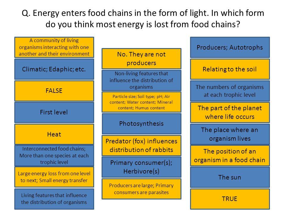 142 Ecosystem Biosphere Habitat Environmental Factors Energy Flow