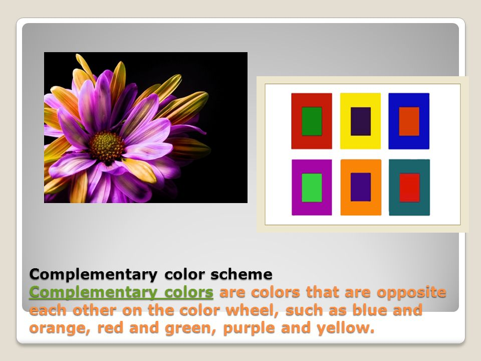 Complementary Color Scheme Colors Are That Opposite Each Other On The Wheel
