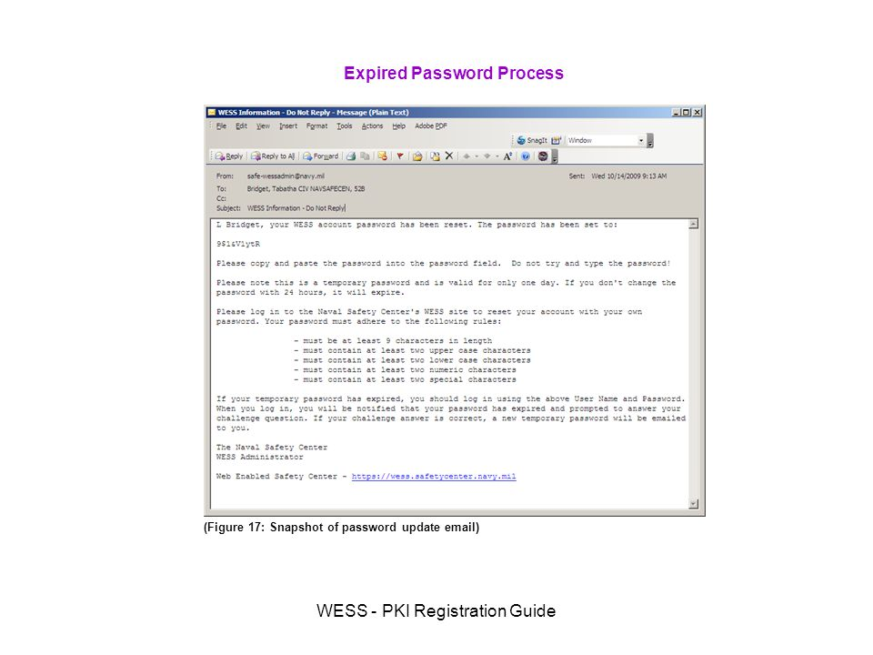 WESS - PKI Registration Guide Expired Password Process (Figure 17: Snapshot of password update  )