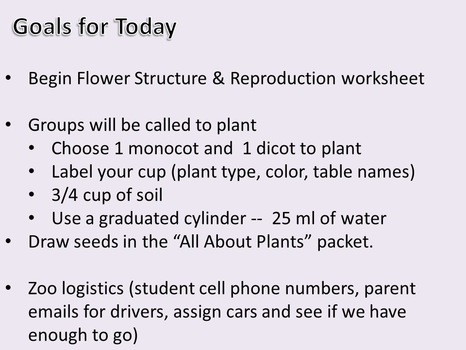 HW #114 - Complete Flower Structure worksheet  Continue