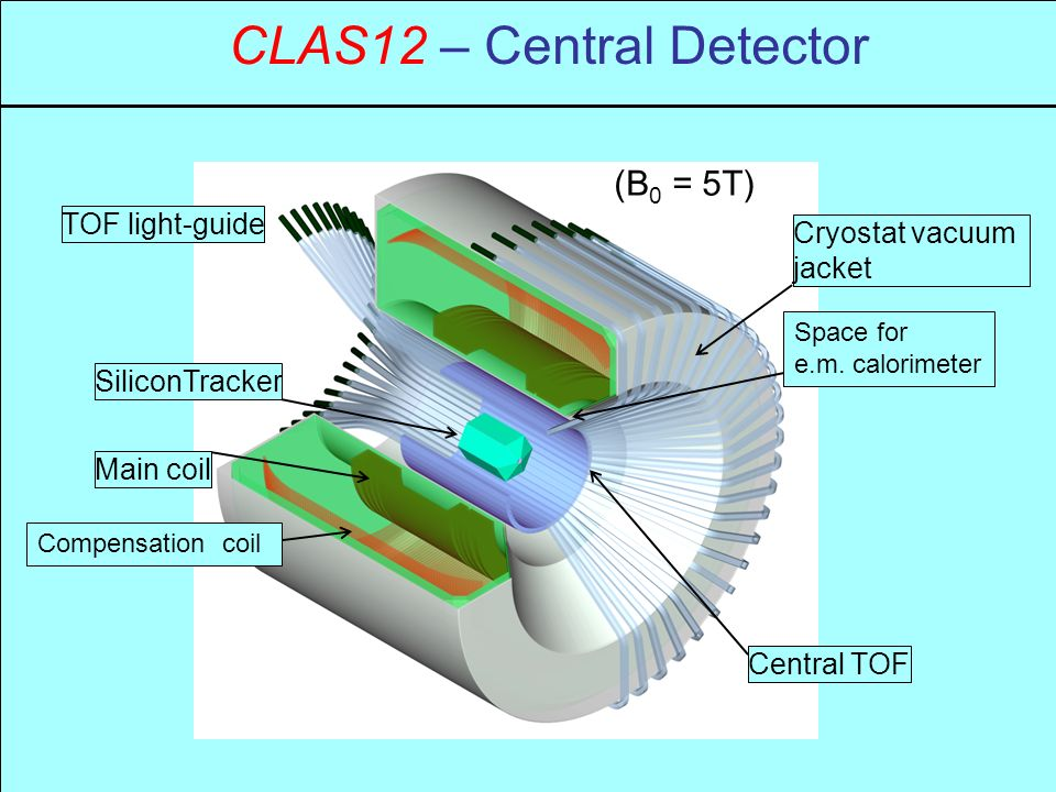 CLAS12 – Central Detector Cryostat vacuum jacket Main coil (B 0 = 5T) TOF light-guide Central TOF SiliconTracker Space for e.m.