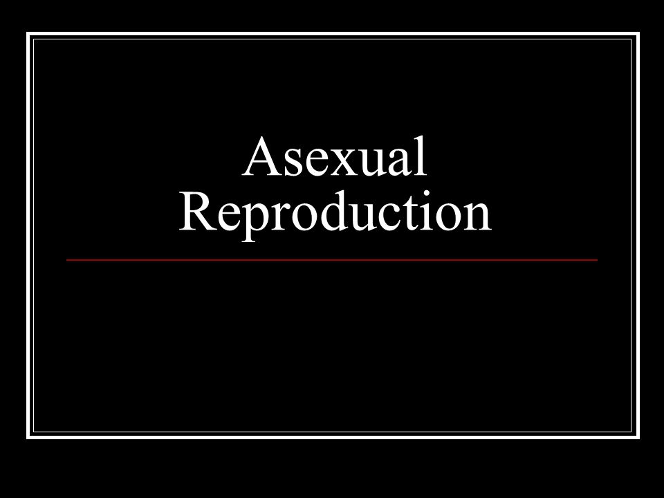 Advantages and disadvantages of asexual reproduction wjec
