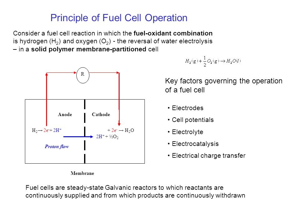 A Discussion of Fuel Cells with particular reference to