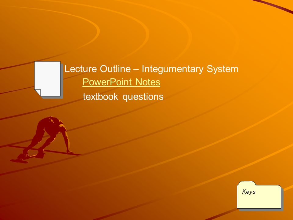 Integumentary System Chapter 36 Section 3 Notes Keys