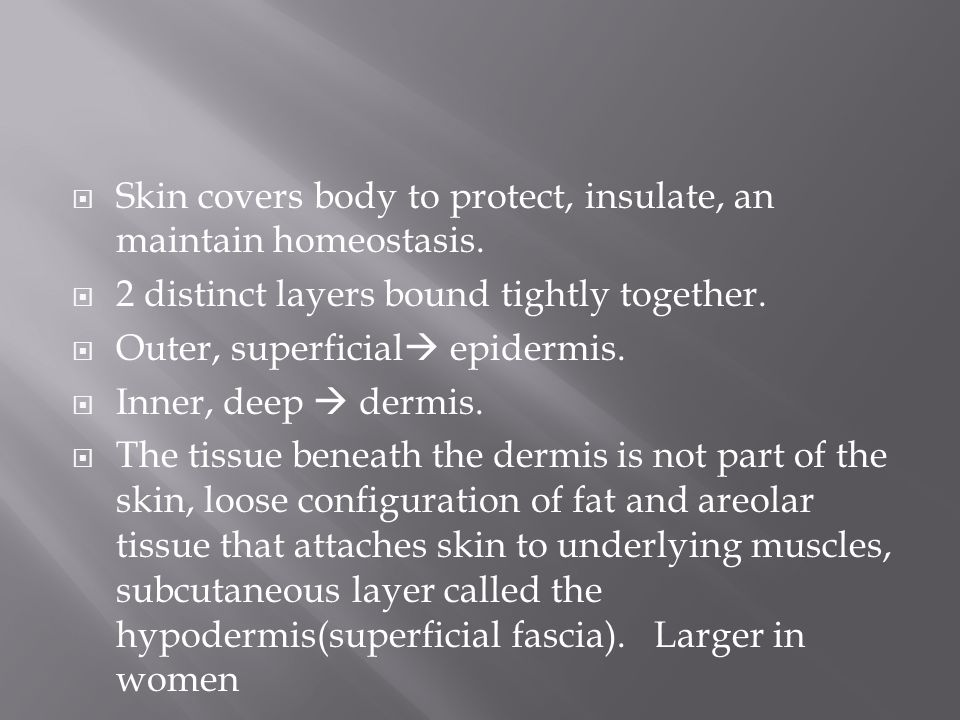  Skin covers body to protect, insulate, an maintain homeostasis.