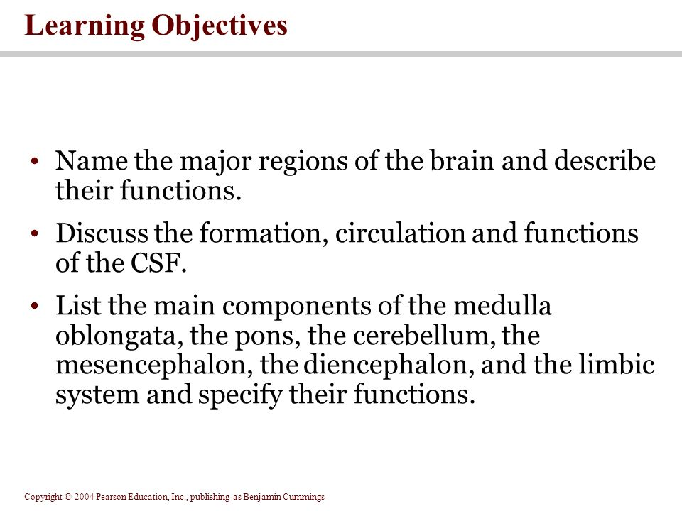 Copyright © 2004 Pearson Education, Inc., publishing as Benjamin Cummings Learning Objectives Name the major regions of the brain and describe their functions.