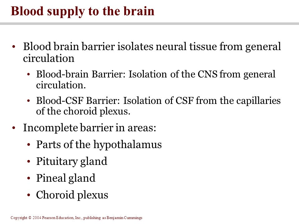 Copyright © 2004 Pearson Education, Inc., publishing as Benjamin Cummings Blood brain barrier isolates neural tissue from general circulation Blood-brain Barrier: Isolation of the CNS from general circulation.