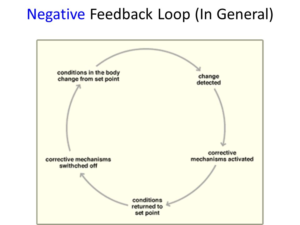 Positive And Negative Feedback Loop Diagrams - DIY Enthusiasts ...